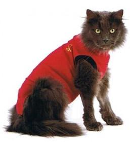 Medical Pet Shirt – Gilet de protection pour chats