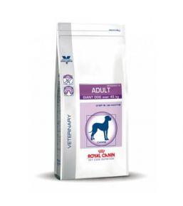 Royal Canin Adult Giant Dog (plus de 45kg) - Croquettes