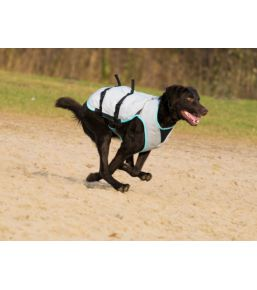 Manteau Rafraichissant pour chien DRY Cooling Vest
