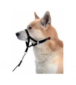 Halti - Licol anti traction pour chiens